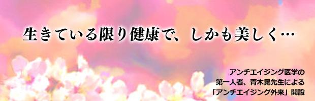 top_image_aagairai